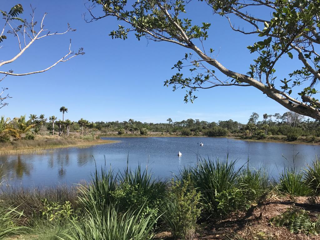sites de rencontres Naples en Floride Comment avoir une vie de rencontre réussie