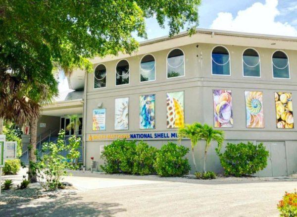 shell museum sanibel