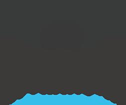 Visites guidées Chicago en français