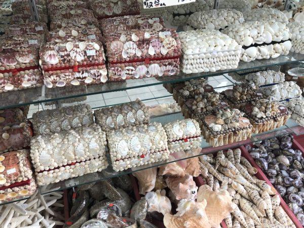 Déco she sells sea Shells sanibel
