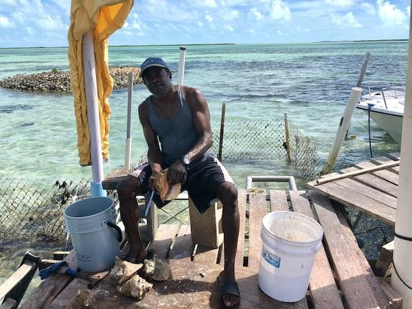 Pêcheur Bimini