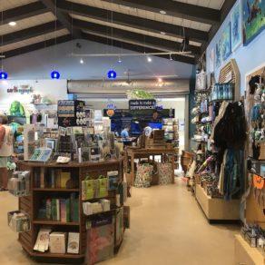 loggerhead-marinelife-center-hopital-tortues-juno-beach