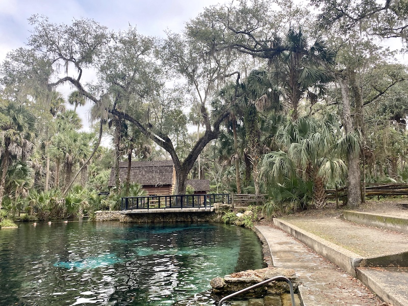 juniper-springs-tresor-coeur-ocala-national-forest