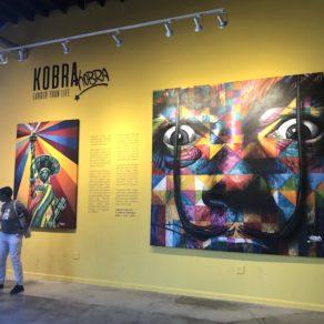 Eduardo Kobra Wynwood Miami